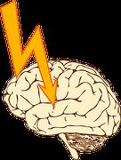 epilepsy-156105__180